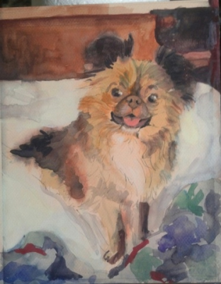 Ginger on the bed - Gouache
