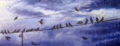 11-pigeons on a wire.jpg